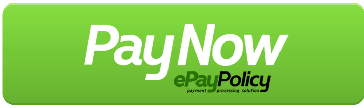 pay-now-button-epay-vfistx_5_orig.png